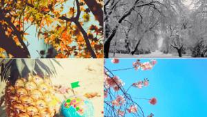 Perché le stagioni influenzano il nostro stato emotivo?