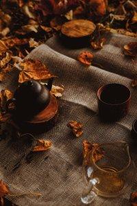 Read more about the article Prepariamoci all'autunno con i rimedi naturali