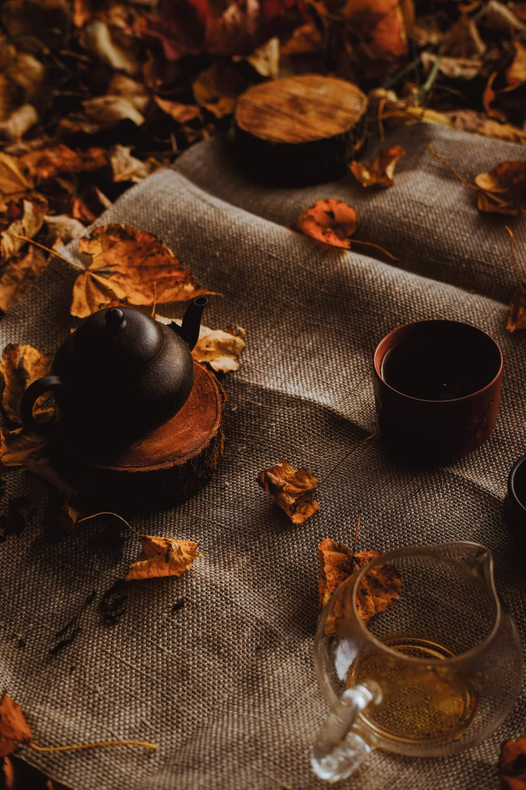 You are currently viewing Prepariamoci all'autunno con i rimedi naturali